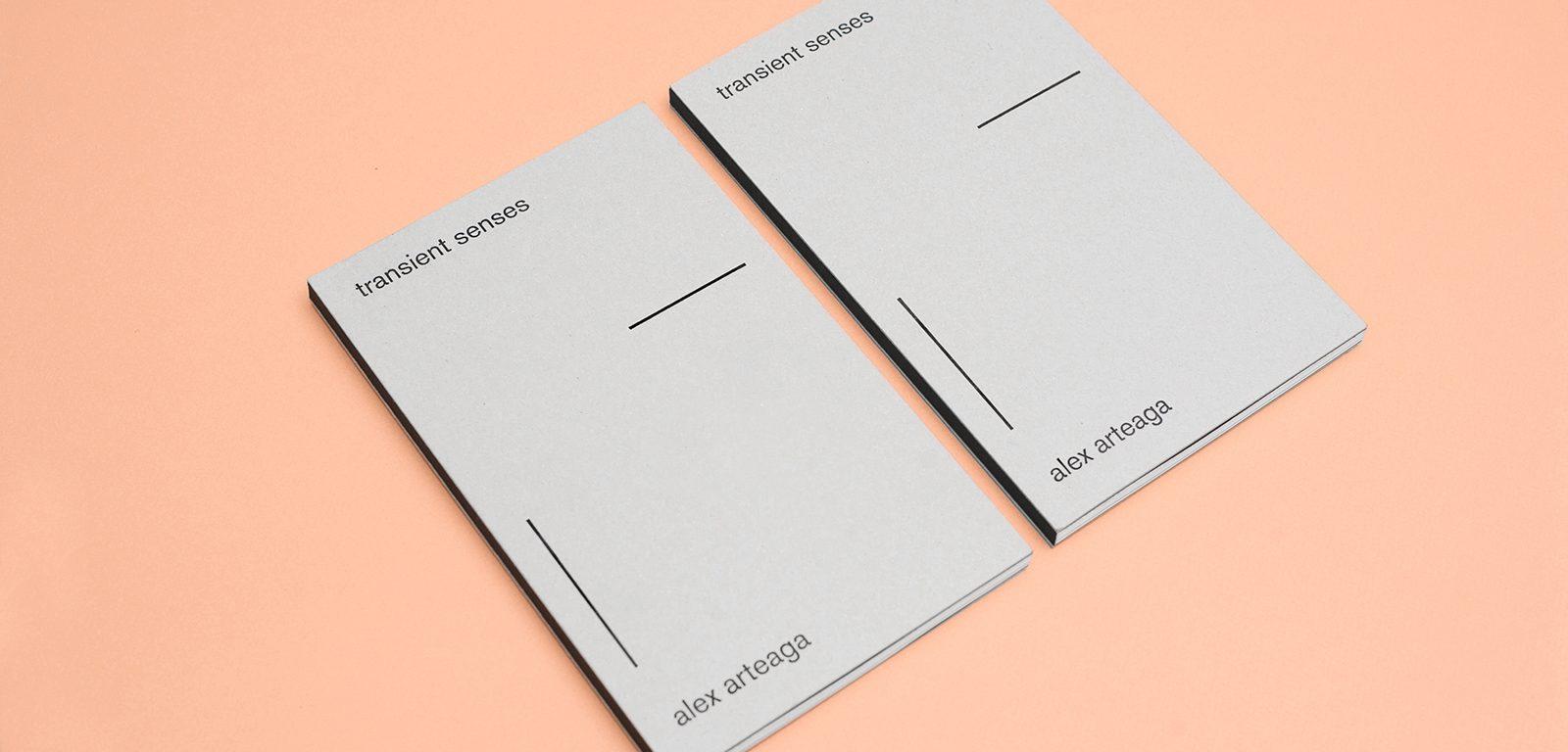 Todojunto — Transient Senses - Publication